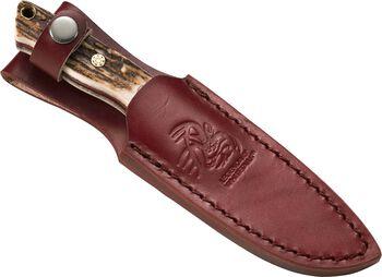 Stainless Steel Whitetail Hunter Knife